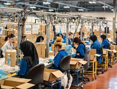 Gender equality supply chains