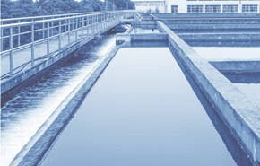 Water Security: Global Challenge, Local Solutions